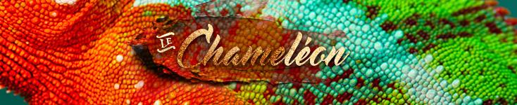 Le Chameleon